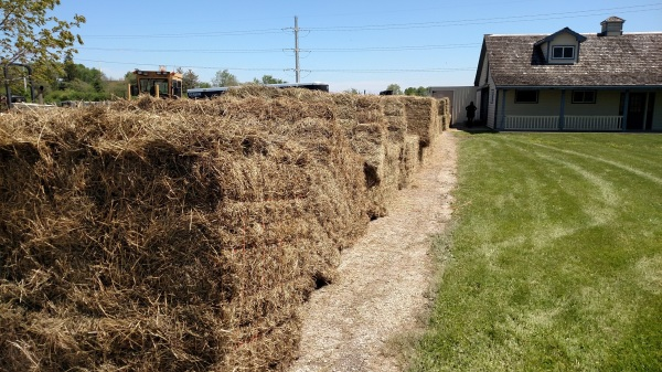 A semi-load of hay dropped along a driveway